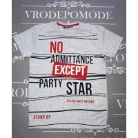 Детская футболка для мальчиков, цвет-серый|13406