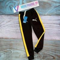 Спортивные штаны для мальчиков|28463